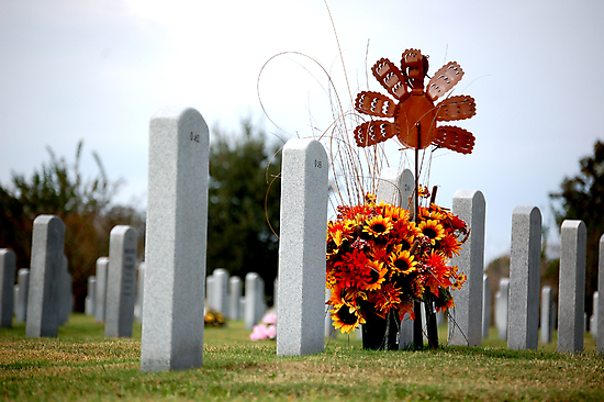 Give Thanks to those who gave us freedom by Lizzie Phillips