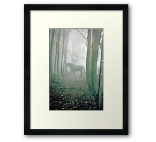 Equestrian Dream Framed Print