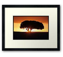On African Soil Framed Print