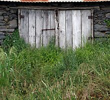 Shed by Walter Quirtmair
