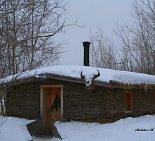 Old Sod House by Madeline M  Allen