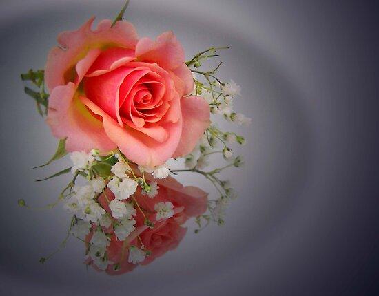 Rosy Glow by Maria Dryfhout