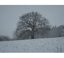 Simple Snow In Surrey Photographic Print