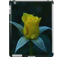 Yellow Rose Waking Up To the World iPad Case/Skin
