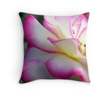drinking from a rose Throw Pillow