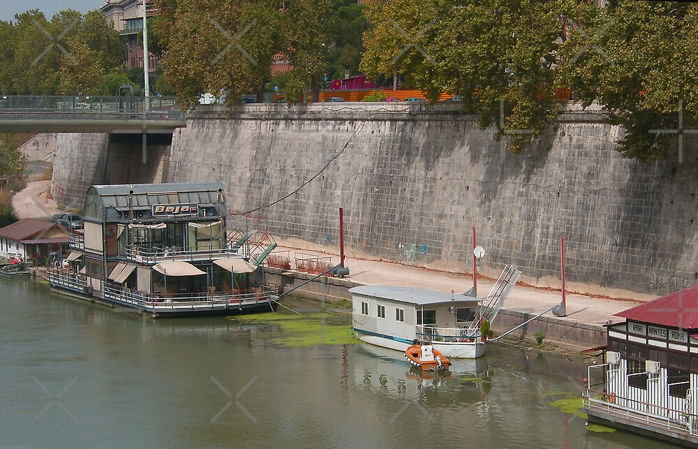 Houseboats on the Tiber II by Tom Gomez