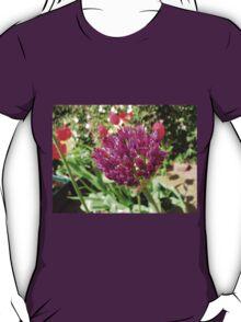 Purple Allium and Scarlet Tulips T-Shirt