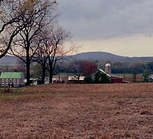 Pennsylvania Farm Country - looking down from the cornfields, Fall 2007 by Jeremiah Keenehan