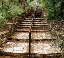 Stairway to Bonnell by dm-photography