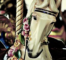 A merry horse called Candy Rose by K.D. Hemi