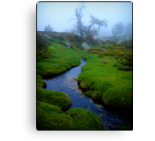 the isle of the elfs Canvas Print