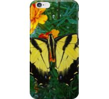 Yellow male Eastern Tiger Swallowtail iPhone Case/Skin