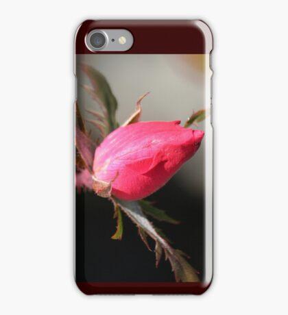 Yuletide Rosebud iPhone Case/Skin