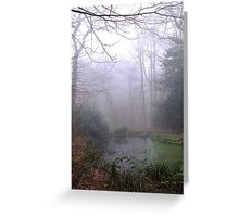 The pond in Eastham Country Park. Greeting Card