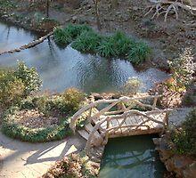 Zen Garden by Michael Self