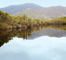 Melaleuca Creek Reflections by Carole-Anne