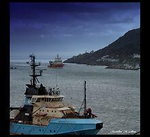 St. Johns Harbor , Newfoundland . Canada by Madeline M  Allen