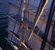 Sedov in the Baltic Sea by HelenB