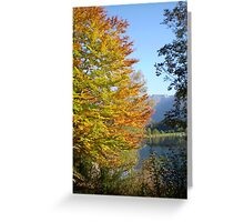 Autumn's touch Greeting Card