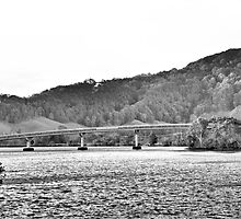Bridge over water  by Carriart