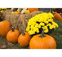 pumpkins in the hay Photographic Print