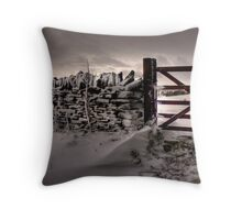 Drift...... Throw Pillow
