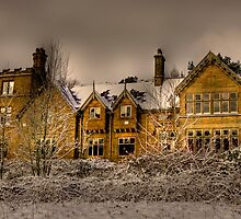 Snow On The Lodge by Dave Warren