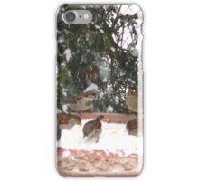Backyard Barney iPhone Case/Skin