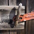 locked by Anne Scantlebury