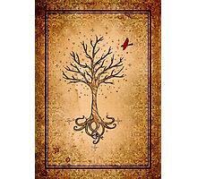 Sacred Tree Photographic Print