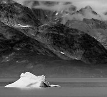 A lone Iceberg by Michael Anderson