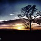 Daybreak by Suni Pruett