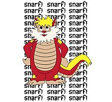 SNARF Photographic Print