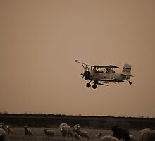 Crop Duster by sriddle77