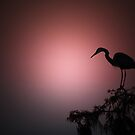 Heron at Twilight by Bonnie T.  Barry