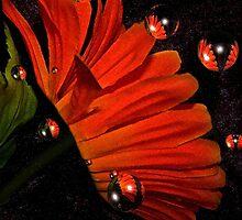 Bubbly orange..... by Rhonda Ford