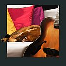 Cat and Guitar by Martine Carlsen