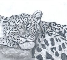 It's a leopards life. by Peter Allton
