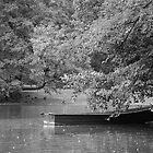 The Kings Boat by Darrell Kelsey