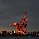 Red Docks by Paul Fleetham