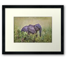 I Nose You're There Framed Print