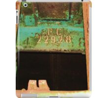 PC 22928 iPad Case/Skin