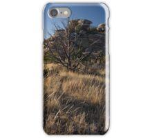 Esperero Trail - Santa Catalina Mts. iPhone Case/Skin