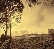 A Misty Morning in Westerway #3 by Elaine Teague
