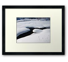 cam time for winter too Framed Print
