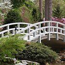 Spring's Bridge by H. Lee