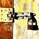 Padlocked by PictureNZ