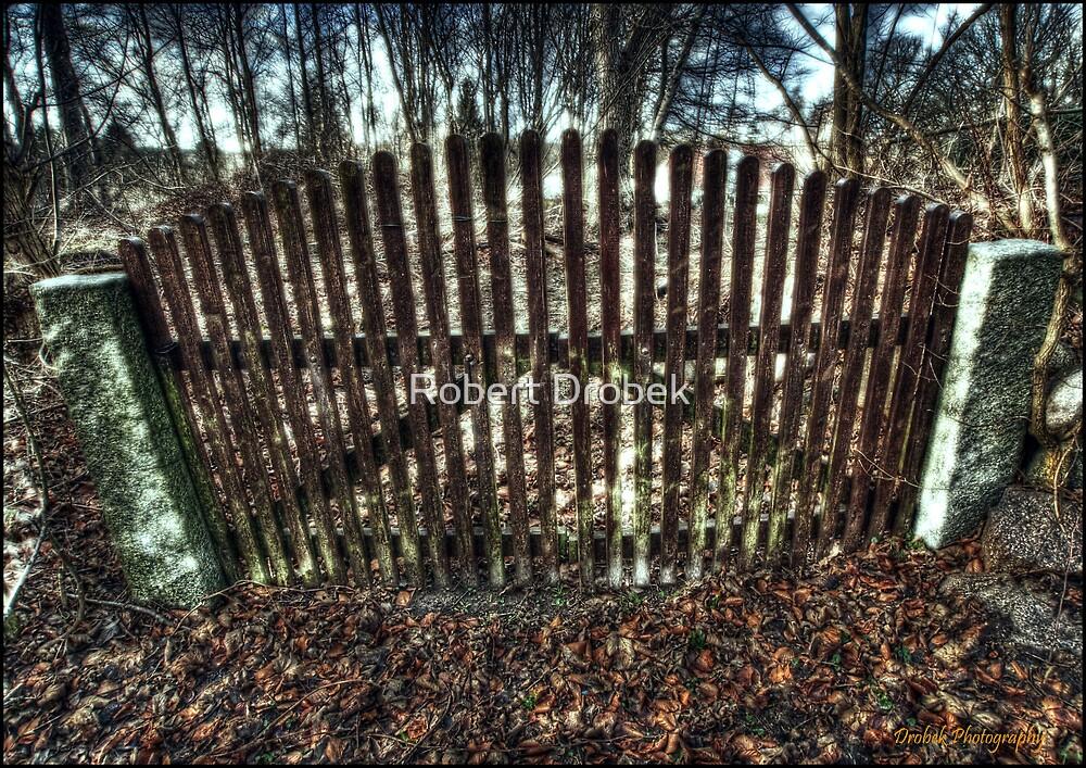 The Gate by Robert Drobek