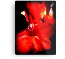 Vibrant Red Gladiolus Metal Print