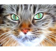 Fractual Feline Photographic Print